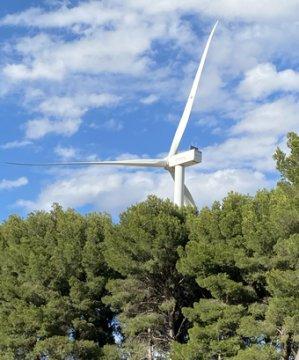 Destrucción de la naturaleza por las energias renovables