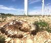 Gurelur denuncia el nuevo acoso de la energía eólica al vilipendiado medio ambiente ribero
