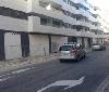 Gurelur denuncia la absurda y brutal destrucción de árboles en la calle Amaya