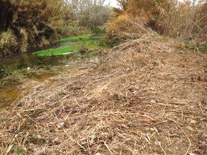 Destrucción de una orilla del río Alhama en Corella