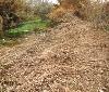 Gurelur denuncia la destrucción de hábitat del visón europeo en Corella