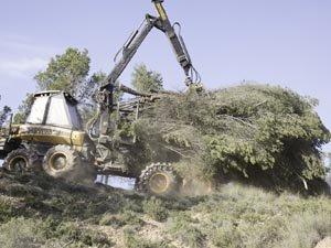 Los destrozos ambientales no paran en Navarra