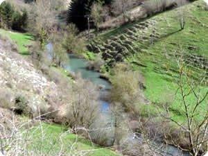 Cabecera del río Larraun