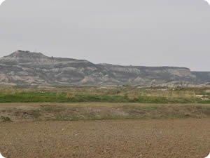 Zona de Sancho Abarca en los límites de Bardenas