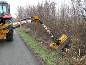 Qué obsesión con eliminar la vegetación de las carreteras