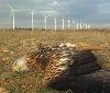 Gurelur presenta alegaciones al proyecto eólico en Buñuel y denuncia el acoso eólico al medio ambiente navarro