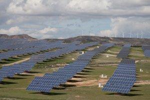 Centrales eólicas y solares acosan la naturaleza