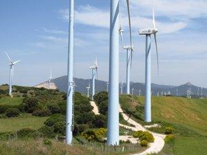 Insostenible colmatación de la Zona Media por centrales eólicas