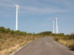 Las centrales eólicas industrializan la naturaleza