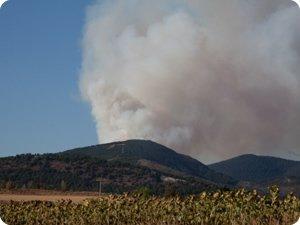 Incendio forestal en Sorauren