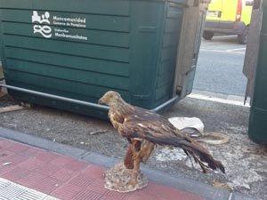 La fauna protegida a la basura