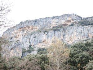 Medio Ambiente responsable del acoso a Etxauri